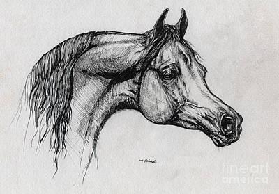 Arabian Horse Drawing 40 Art Print by Angel  Tarantella