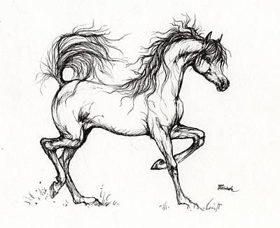 Arabian Horse Drawing 5 Art Print by Angel  Tarantella