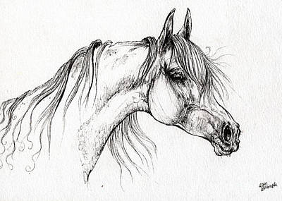 Arabian Horse Drawing 51 Art Print