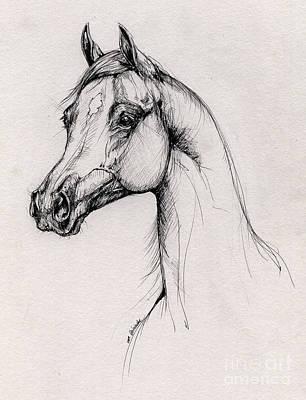 Arabian Horse Drawing 60 Original by Angel  Tarantella
