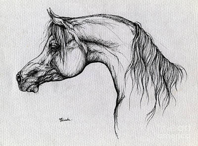 Arabian Horse Drawing 62 Art Print