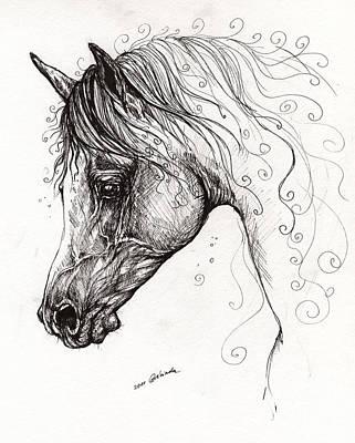 Arabian Horse Drawing 7 Art Print by Angel  Tarantella