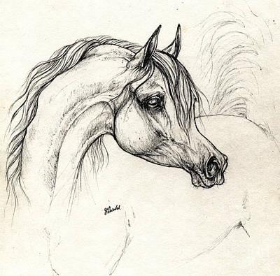 Arabian Horse Drawing A 18 10 2013 Art Print