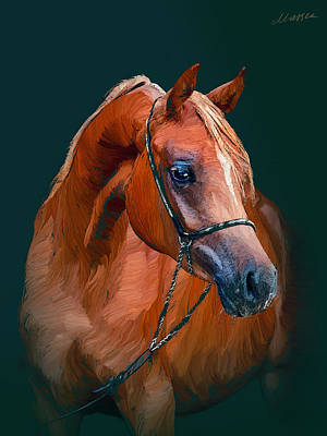 Arabian Horse Art Print by Marina Likholat