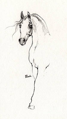 Arabian Horse Sketch 2014 05 24 A Original by Angel  Tarantella