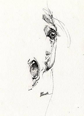 Equine Art Drawing - Arabian Horse Sketch 2014 05 24 H by Angel  Tarantella