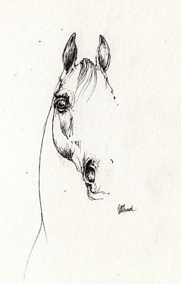 Horse Drawing - Arabian Horse Sketch 2014 05 29b by Angel  Tarantella