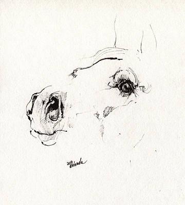 Horse Drawing - Arabian Horse Sketch 2014 05 30a by Angel  Tarantella