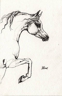 Horses Drawing - Arabian Horse Sketch 2014 05 30c by Angel  Tarantella