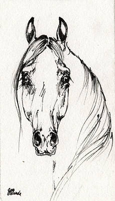 Horses Drawing - Arabian Horse Sketch 2014 05 30f by Angel  Tarantella