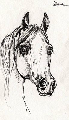 Horses Drawing - Arabian Horse Sketch 2014 06 16 A by Angel  Tarantella