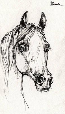 Horse Drawing - Arabian Horse Sketch 2014 06 16 A by Angel  Tarantella