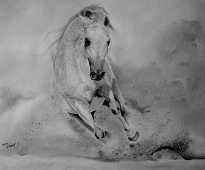 Arabian Horse Original