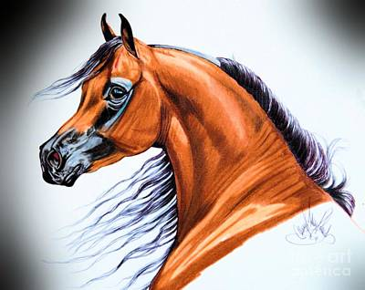 Drawing - Arabian In Color Pencil by Cheryl Poland