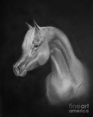 Arabian Night Art Print by Lissa Rachelle