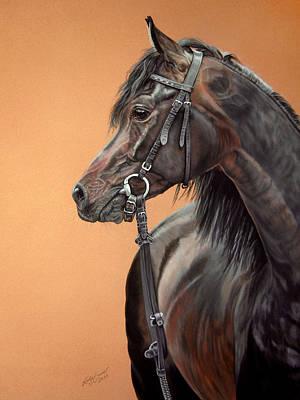 Equine Pastels Painting - Arabian Horse Chimeryk - Araber Chimeryk by Katja Sauer