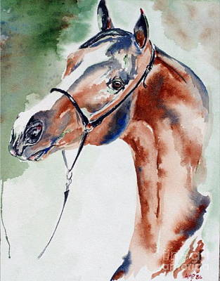 Painting - Arabian Stallion by Adele Pfenninger