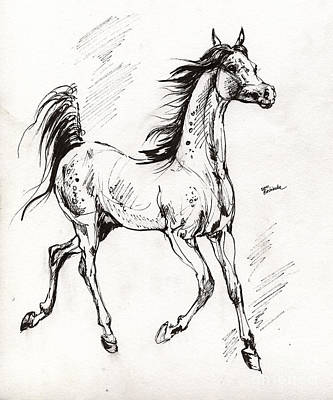 Arabian Yearling Art Print by Angel  Tarantella