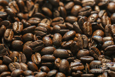 Photograph - Arabica Beans by Dale Powell