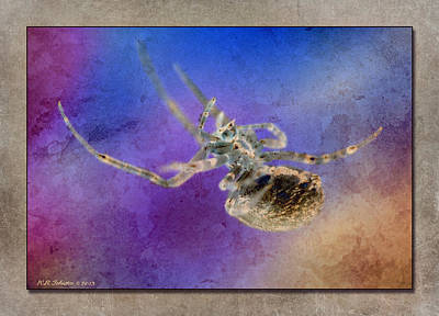 Photograph - Arachnobat by WB Johnston