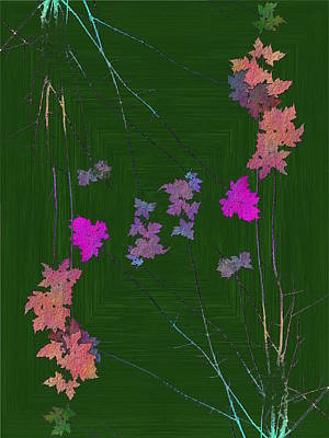 Digital Art - Arbor Autumn Harmony 10 by Tim Allen