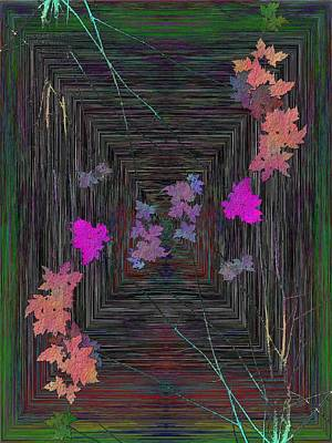 Digital Art - Arbor Autumn Harmony 11 by Tim Allen