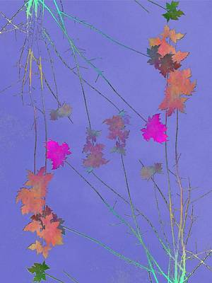 Digital Art - Arbor Autumn Harmony 2 by Tim Allen