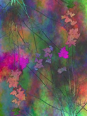 Digital Art - Arbor Autumn Harmony 4 by Tim Allen