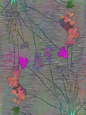 Digital Art - Arbor Autumn Harmony 5 by Tim Allen