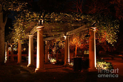 Photograph - Arbor Glow by Crystal Nederman