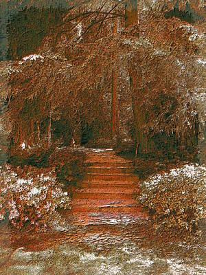 Arbor Steps Print by Tim Allen