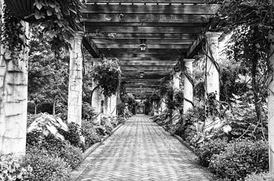 Arbor Walkway Art Print by Phyllis Peterson