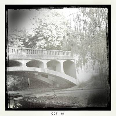 Arboretum Bridge Print by Justine Connolly