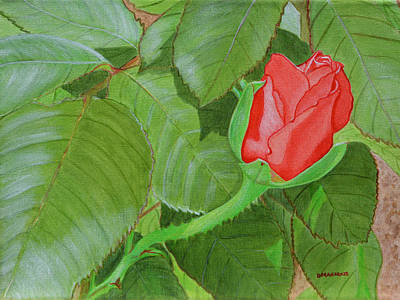 Painting - Arboretum Rose by Donna  Manaraze