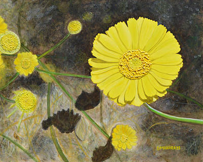 Painting - Arboretum Wild Flower  by Donna  Manaraze