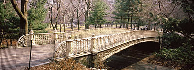 Arched Bridge Photograph - Arch Bridge In A Park, Central Park by Panoramic Images