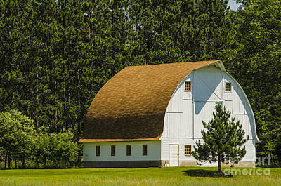Photograph - Arch Roof Barn And Pine Tree Channing Michigan by Deborah Smolinske