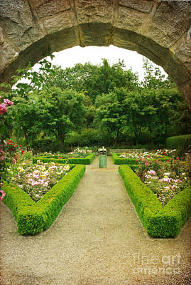 Art Print featuring the photograph Arch To The Rose Garden by Maria Janicki
