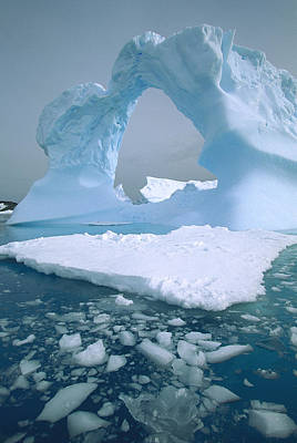 Photograph - Arched Iceberg Antarctica by Colin Monteath