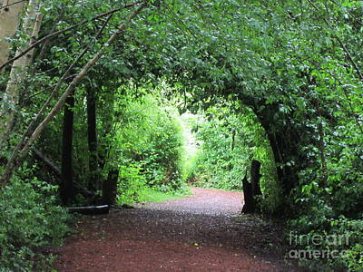 Arched Pathway Art Print by Melissa Stinson-Borg