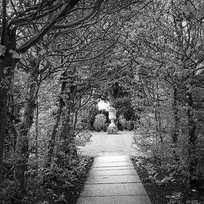 Photograph - Arched Walk by Christopher Rees