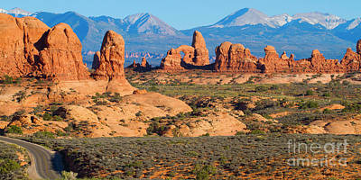 Photograph - Arches National Park by Martha Marks