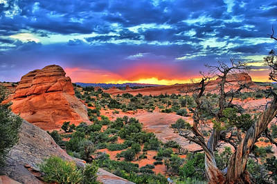 Photograph - Arches National Park Sunset by Gregory Ballos