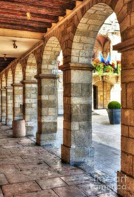 Photograph - Arches Of Vienne by Mel Steinhauer