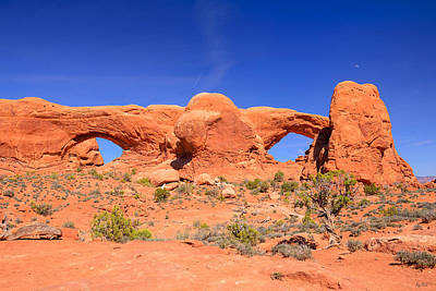 Nature Photograph - Arches Windows by Greg Norrell