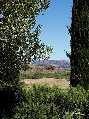 Photograph - Arcosanti View by R B Harper