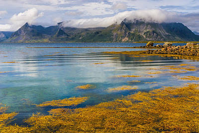 Photograph - Arctic Circle Paradise by Maciej Markiewicz