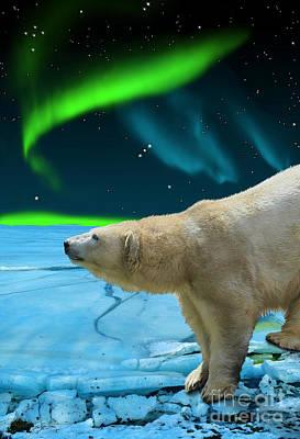 Animal Lover Digital Art - Arctic Journey by Skye Ryan-Evans