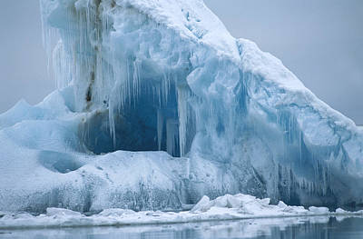 Flip Nicklin Photograph - Arctic Landscape Svalbard Norway by Flip Nicklin