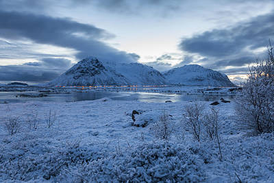 Photograph - Arctic Morning by Andy Bitterer